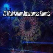 79 Meditation Awareness Sounds von Entspannungsmusik