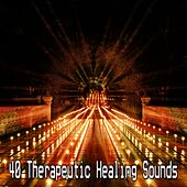 40 Therapeutic Healing Sounds de Meditación Música Ambiente