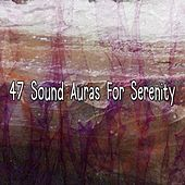 47 Sound Auras For Serenity by Classical Study Music (1)