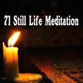 71 Still Life Meditation von Massage Therapy Music