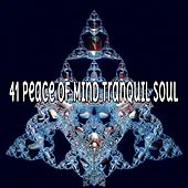 41 Peace Of Mind Tranquil Soul by Classical Study Music (1)