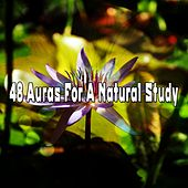 48 Auras For A Natural Study von Massage Therapy Music