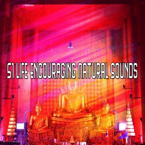 51 Life Encouraging Natural Sounds de Yoga Music