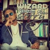 Sorry (Radio Edit) de Wizard