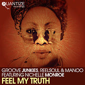 Feel My Truth by Groove Junkies