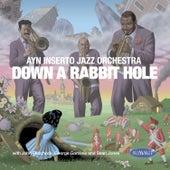 Ayn Inserto Jazz Orchestra: Down a Rabbit Hole by The Ayn Inserto Jazz Orchestra