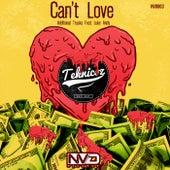 Can't Love - Single de Teknicoz