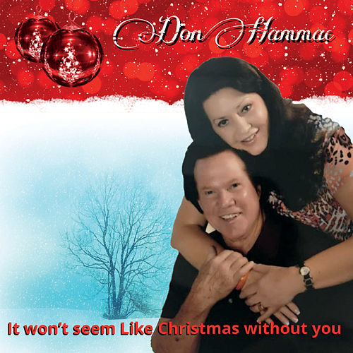 It Won't Seem Like Christmas Without You by Don Hammac
