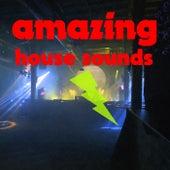 Amazing House Sounds de Various Artists