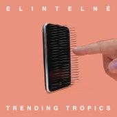 Elintelné by Trending Tropics