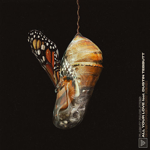 All Your Love (Christopher Port Remix) by Flight Facilities