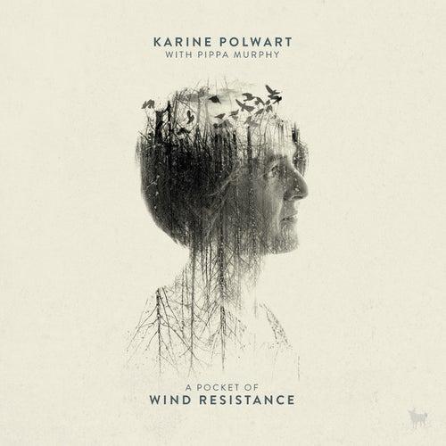 Faultlines by Karine Polwart