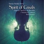 Spirit of Casals de Damián Martínez Marco
