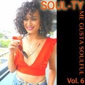 Me Gusta Soulful, Vol. 6 by Soul-Ty