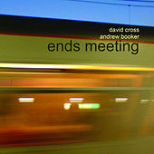Ends Meeting by David Cross