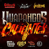 Huapangos Calientes von Various Artists