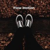Flow Motion von Lafayette