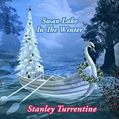 Swan Lake In The Winter by Stanley Turrentine