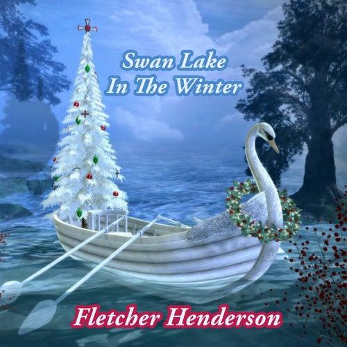 Swan Lake In The Winter by Fletcher Henderson