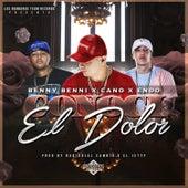 Conoci El Dolor by ENDO