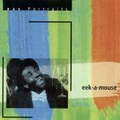 RAS Portraits: Eek-A-Mouse de Eek-A-Mouse