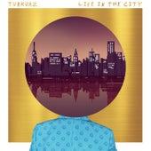 If I Ever Fall Sleep by Turkuaz