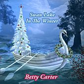 Swan Lake In The Winter by Betty Carter