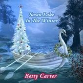 Swan Lake In The Winter von Betty Carter