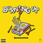 Burning Up by Mod Sun