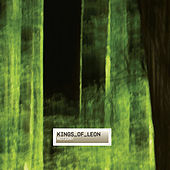 Notion by Kings of Leon