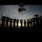 Nuestra Historia by Mariachi Imperial Azteca