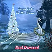 Swan Lake In The Winter by Paul Desmond