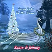 Swan Lake In The Winter di Santo and Johnny