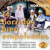 Entre Jalón y Jalón 14 Corridos Bién Empolvados, Vol. 2 de Various Artists