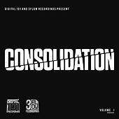 Digital 101 and 3Flow Recordings present Consolidation Vol I de Various Artists
