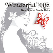 Wonderful Life - New Soul Of South Africa von Various Artists