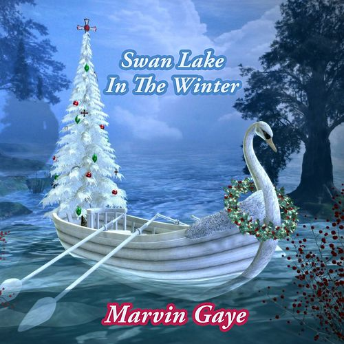 Swan Lake In The Winter by Marvin Gaye
