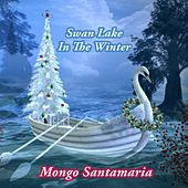 Swan Lake In The Winter di Mongo Santamaria