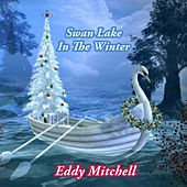 Swan Lake In The Winter by Eddy Mitchell