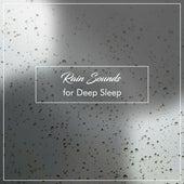 15 Zen Rain Songs for Yoga by Rain for Deep Sleep, Rainfall, The Rain Library