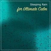 12 Peaceful Rain Sounds to Calm the Mind & Relax by Rain for Deep Sleep, Rainfall, The Rain Library