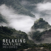 Relaxing Nature Melodies de Nature Sound Collection