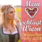 Mein Herz schlägt Wiesn - Oktoberfest Party 2018 von Various Artists