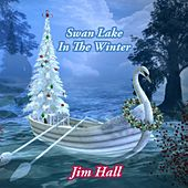 Swan Lake In The Winter by Jim Hall