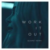 Work It Out (Seakret Remix) de Elekfantz