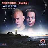 I Will Find You by Mark Sherry