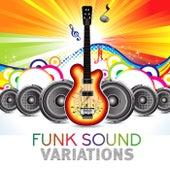 Funk Sound Variations – Easy Listening, Funk, Soul, R&B Music Selection de Various Artists