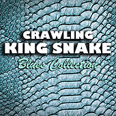 Crawling King Snake Blues Collection by Various Artists
