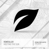 Meeting the Sun de Ronfoller