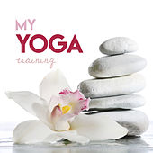 My Yoga Training Ethnic Flavoured Music by Various Artists